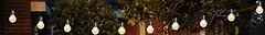 Фото Anna's Collection Декоративные лампочки 15 м (8713619335679)